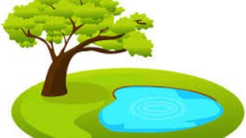 Permalink to: Meditatiekring met een groen tintje